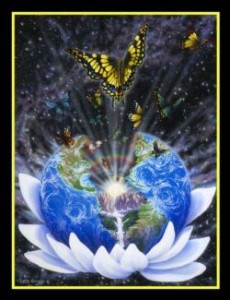 transformatie aarde vlinder